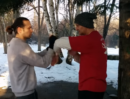 Лап Сау ( упражнение ) – проверка на третия принцип във Винг Чун