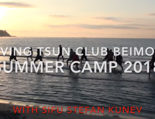 Ving Tsun summer camp 2018
