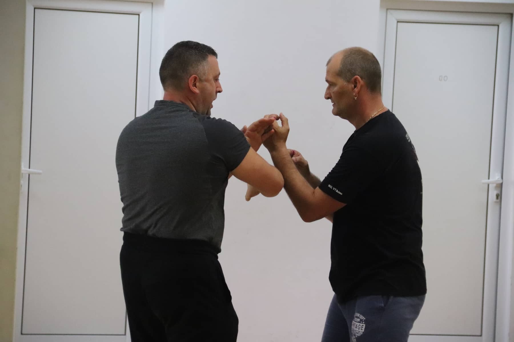 Seminar With sifu Stefan Kunev